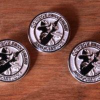 CFDA Membership Pins-0